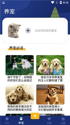 宠物喂养冷知识app《宝贝宠物》宠物用品的测评
